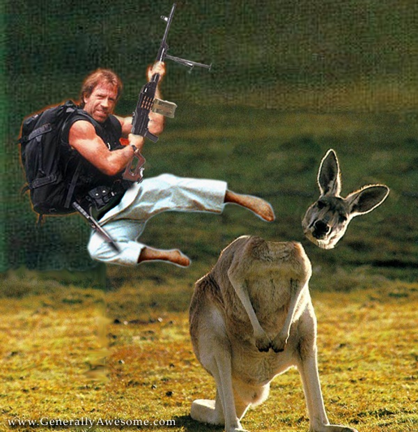 chuck norris funny