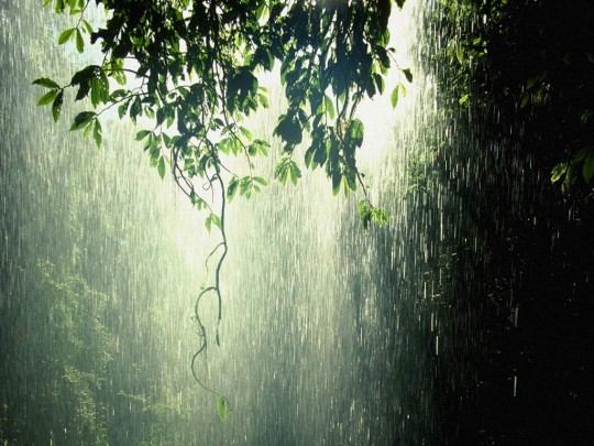 rainwallpaperriver 540x405 - August Ki Ye Pehli Barish