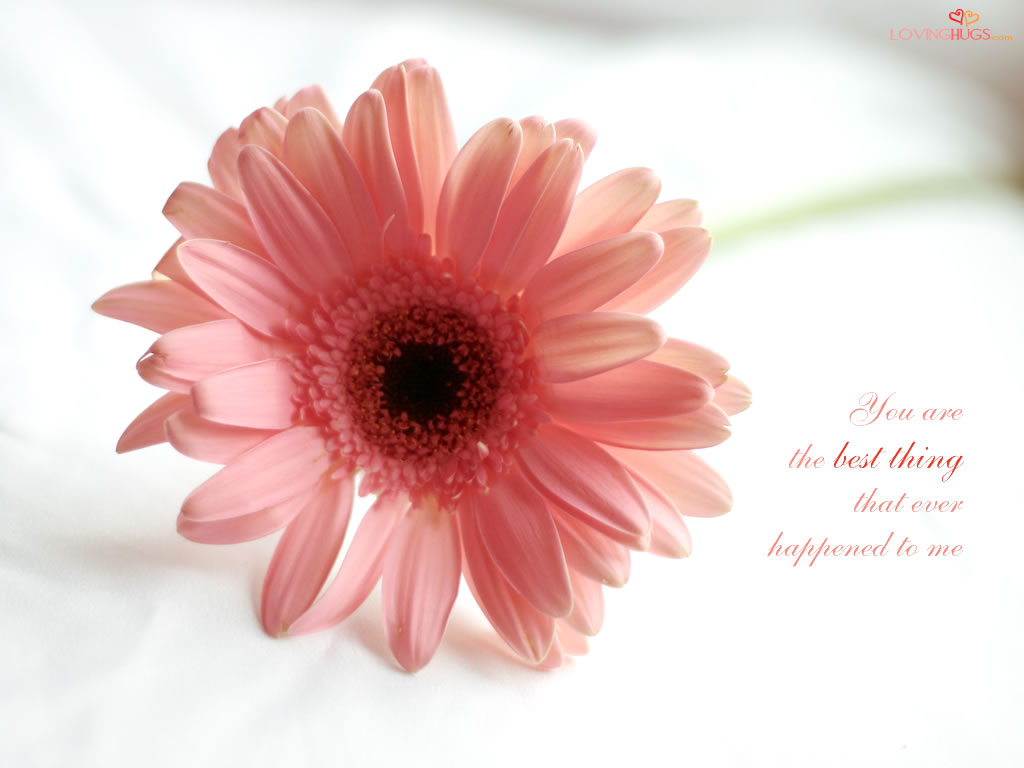 Love Wallpapers With Flowers : LOVE - Quotes and Wallpapers - The Wondrous Pics