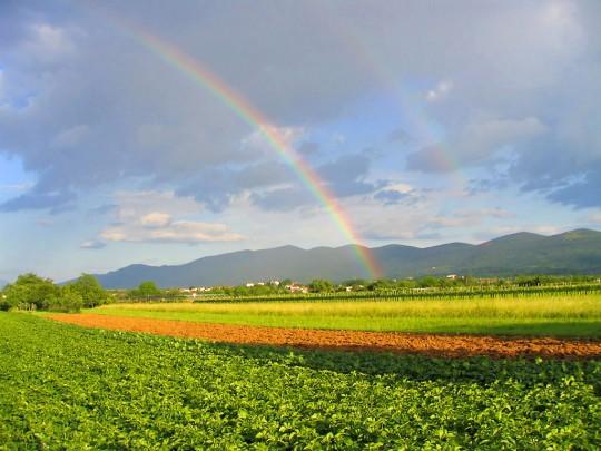 قوس القزح يغازل سطح المكتب/ Rainbow Flirts Desktop rainbow-across-a-cro