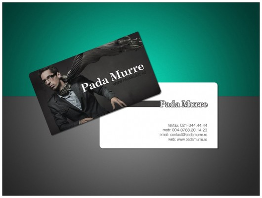 Inspiring Business Card Designs  (21)