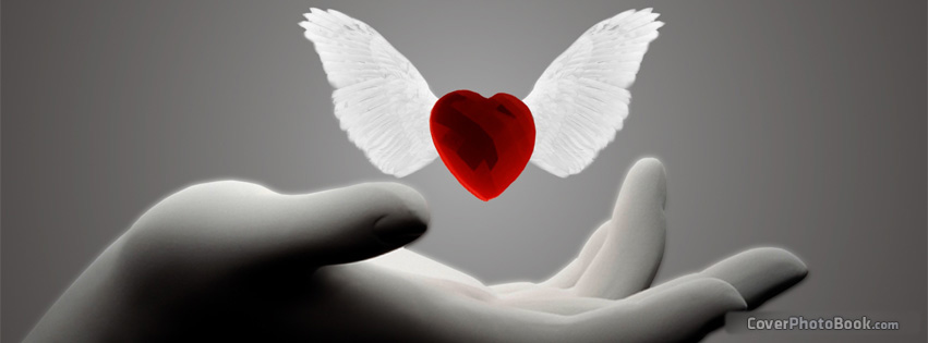 Love heart wings angel facebook cover