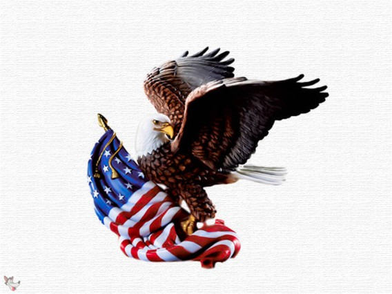 4th-Of-July-Eagle