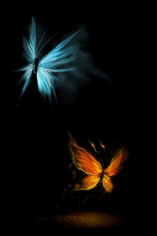 Butterfly iPhone Retina Wallpaper
