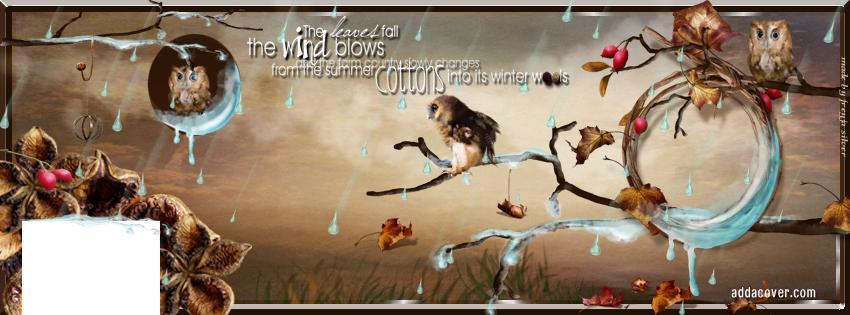 november-rain - 5810 - The Wondrous Pics