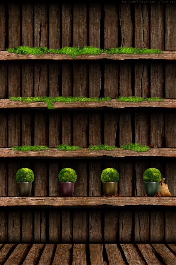 Wooden Plant Shelves iPhone Wallpaper