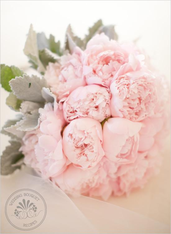 http://wondrouspics.com/wp-content/uploads/2012/08/Pink_Peony_Wedding_Bouquet.jpg