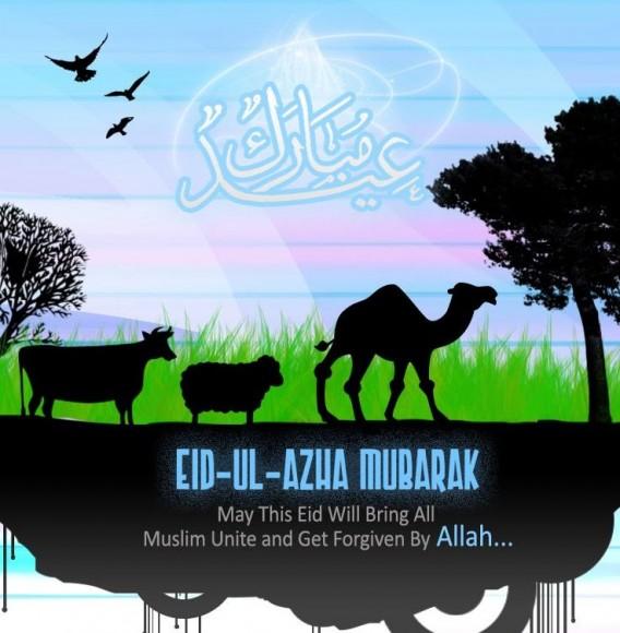 eid ul adha 2012 greeting cards  the wondrous pics