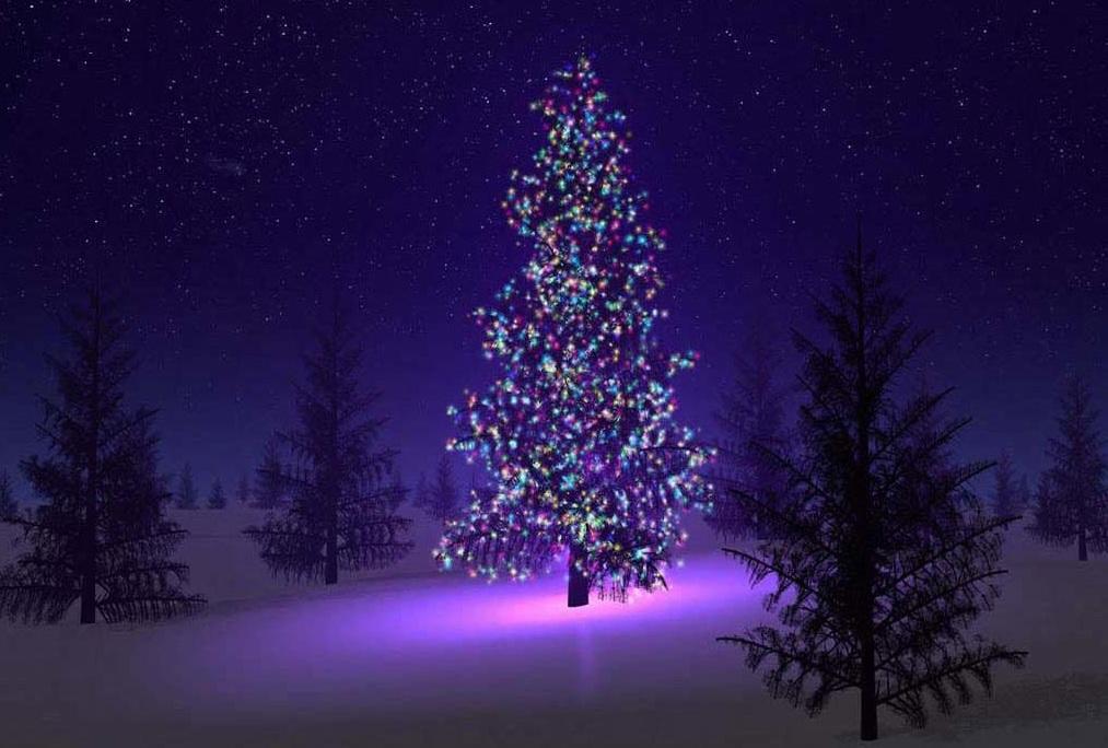 Christmas-Tree-garden-decoration-models - 7419 - The Wondrous Pics