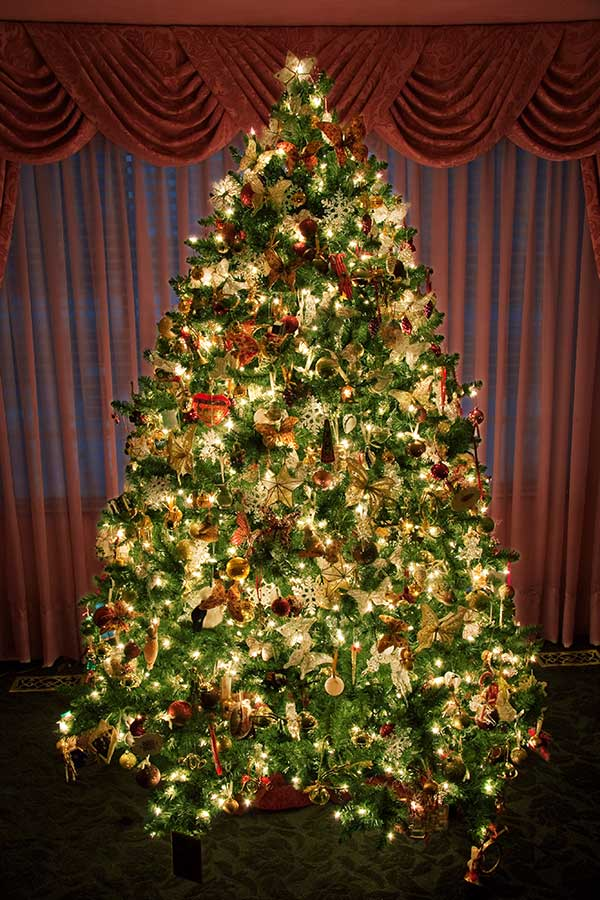 Http Wondrouspics Com What Makes A Christmas Tree So Much Amazing Decorated Christmas Tree 2