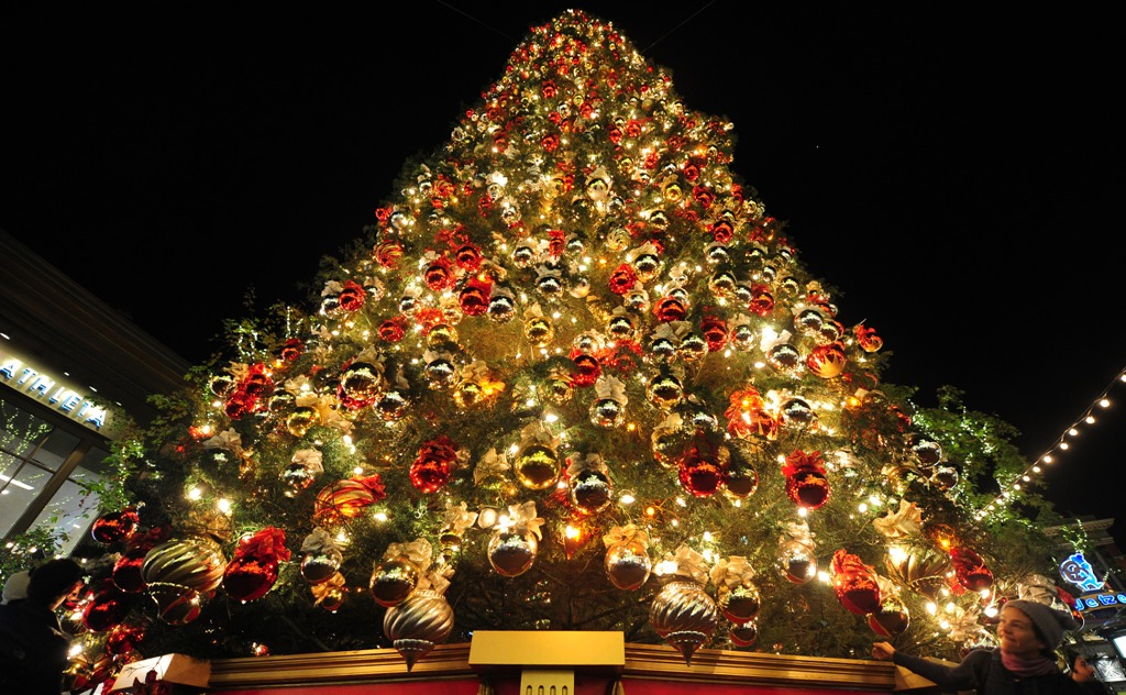 Http Wondrouspics Com What Makes A Christmas Tree So Much Amazing Decorated Christmas Tree 3