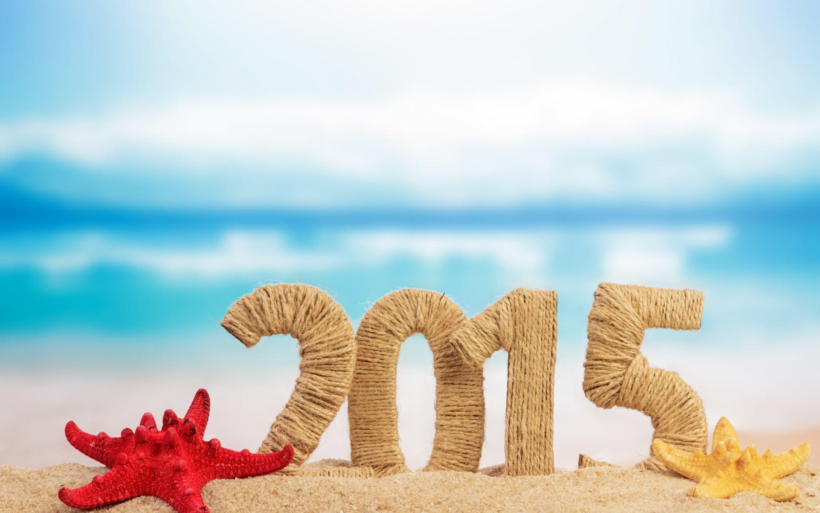new-year-christmas-2015-holidays