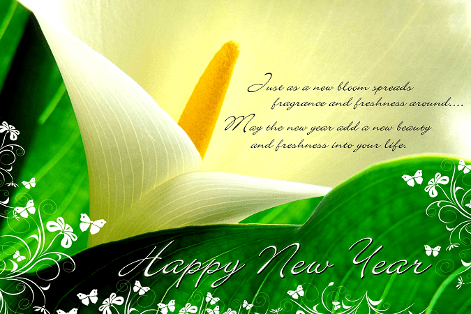 New-Year-HD-SMS-images