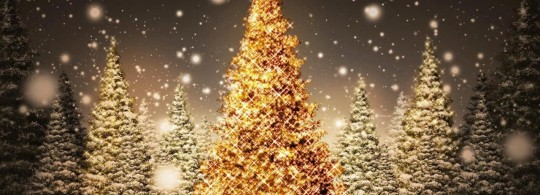 Beautiful Christmas Tree Decorating Ideas