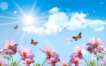 Spring-Wallpaper-Widescreen-D3W