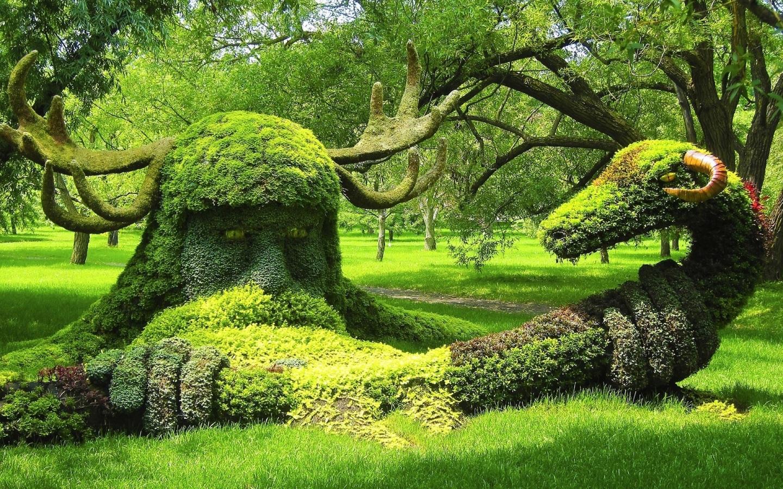 Amazing-nature-shape